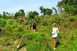 Пешие прогулки по джунглям
